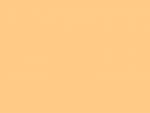Farbfilter Bogen Rosco Supergel Nr. #09