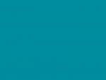 Farbfilter Bogen Rosco E-Colour+ Nr. 116