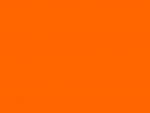 Farbfilter Rolle Rosco E-Colour+ Nr. 135